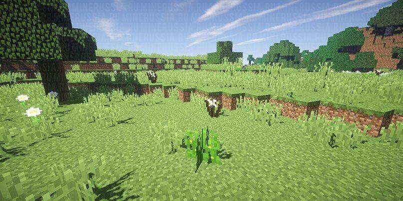 Новая трава