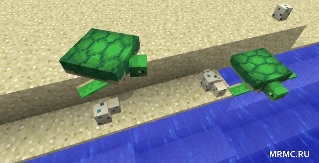 Черепахи на берегу моря