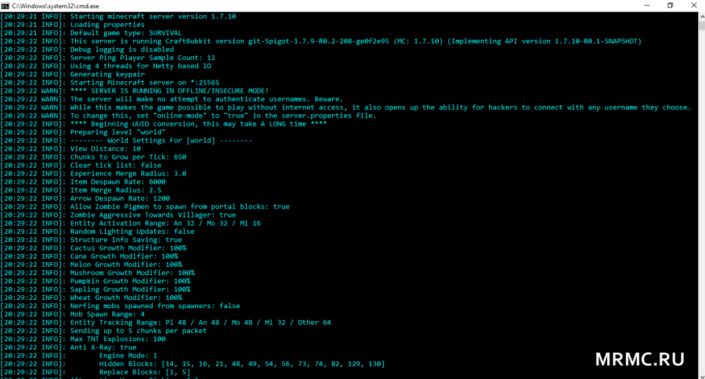 Скриншот консоли сервера