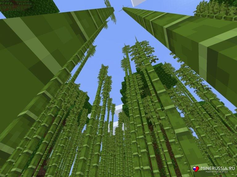 Бамбуковый биом