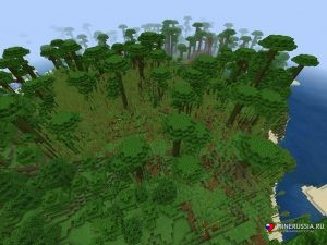 Сид на бамбуковые джунгли на берегу океана Майнкрафт PE