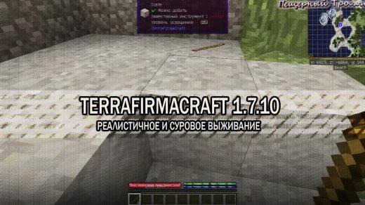 "Мод ""TerraFirmaCraft"" для Майнкрафт"