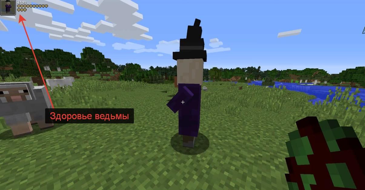 Мод ToroHealth - скриншот 2