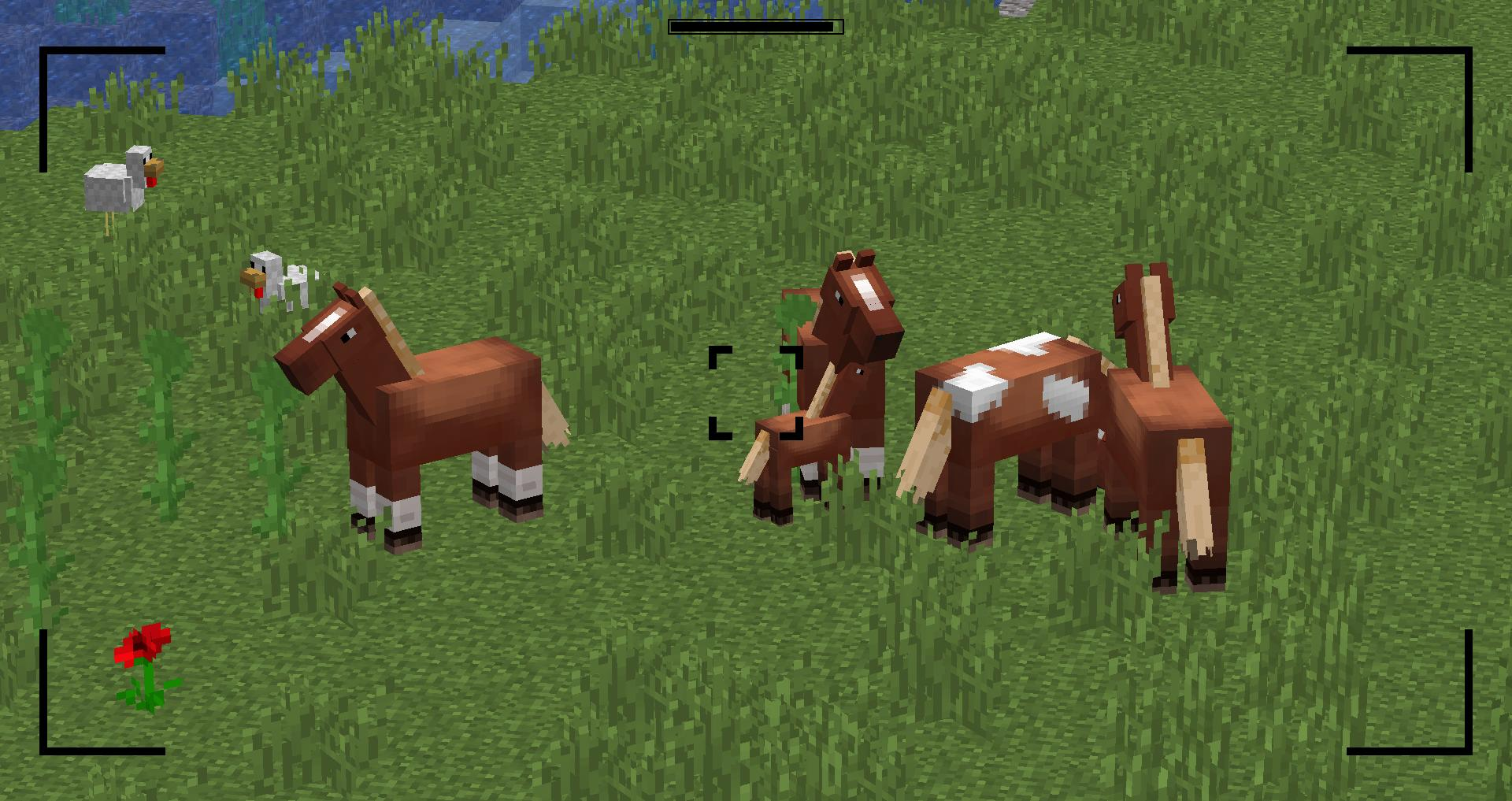 Мод накамеру - скриншот 3