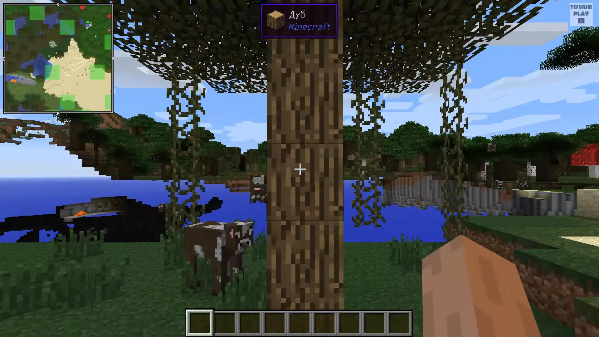 Мод Waila Harvestability (подсказки) - скриншот 3