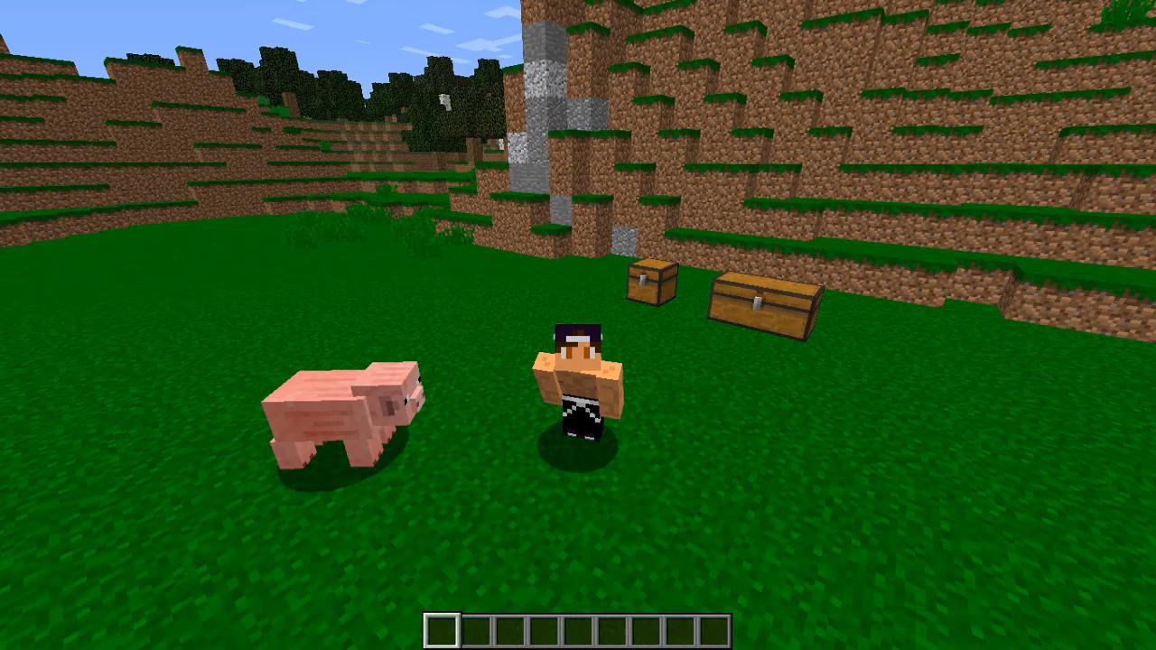 Мод «Better Agriculture» (40 животных) дляМайнкрафт - скриншот 3